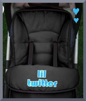 Personalised Pushchair footmuff with 'lil twitter'
